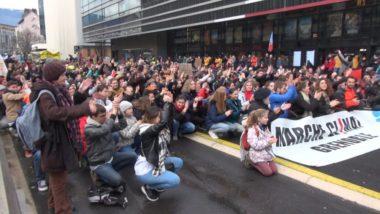 Fridays for Future Grenoble appelle à manifester le 19 mars 2021. La première marche pour le climat de l'année. © Joël Kermabon - Place Gre'net