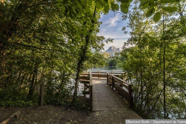 Bois de la Bâtie sur la commune de Saint-Ismier © Bertrand Bodin - Conseil départemental de l'Isère