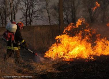 Incendies à haut risque près la centrale de Tchernobyl. Firefighters-in-the-Radioactive-Contaminated-Bryansk-Region-avril-2016-©-Vladislav-Zalevskiy-Greenpeace.jpg