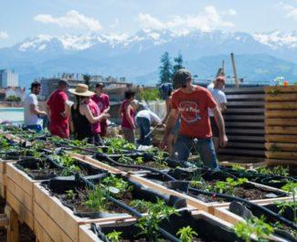 Jardinage collectif avec l'association Cultivons nos toits sur le toit de CCSTI Casemate, 17 mai 2017. © Yuliya Ruzhechka - Place Gre'net