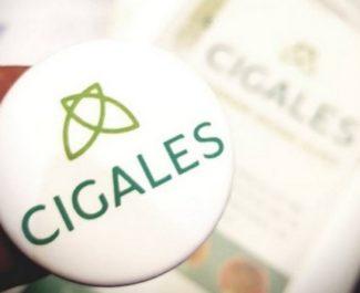 Les Cigales Auvergne-Rhône-Alpes appellent à créer de nouveaux clubs d'investisseurs « sociaux »