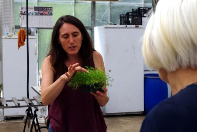 Isabelle Robles, fondatrice de Mille Pousses et ingénieure agronome. © Anissa Duport-Levanti - Place Gre'net
