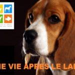 Graal Crédits : TierfotografieWinter - Fotolia