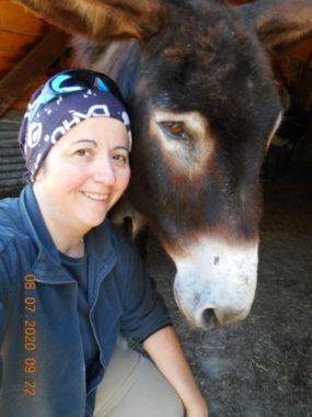 Barroud'âne en Vercors, victime de la crise du tourisme.Barroud'âne Bénévoles - Sylvie aujourd'hui