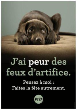 Affiche PETA