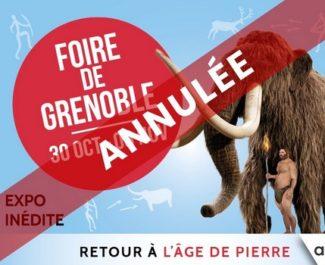 Alpexpo annonce l'annulation de la Foire de Grenoble pour cause d'alerte renforcée au Covid