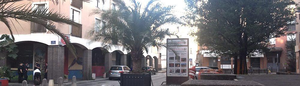 Contrôle de police quartier de l'Alma à Grenoble © Patricia Cerinsek