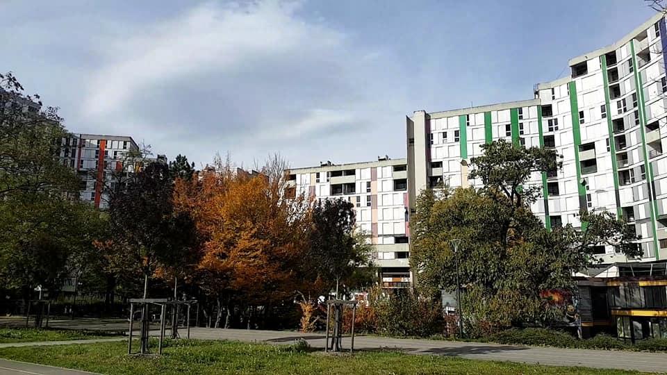 Un bébé blessé et une scène de lynchage galerie de l'Arlequin à Grenoble lundi 16 août en fin de journée