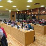 Conseil municpal d'Echirolles du 2 novembre 2020. © Tim Buisson – Place Gre'net