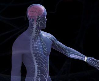 Remedee Labs teste un nouvel outil de lutte contre les douleurs liées à la fibromyalgie