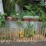 Jardin des voisins d'Alphonse Daudet