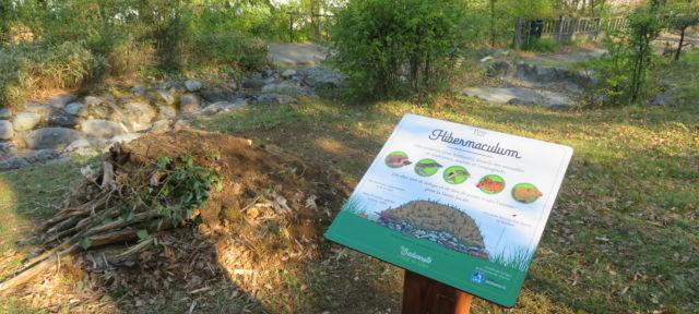biodiversité au Pont-de-Claix : partenariat avec la LPO Hibernaculum dans le parc Auguste Borel au Pont-de-Claix. © Tim Buisson – Place Gre'net
