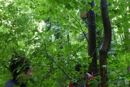 La Ville de Grenoble met les agents (volontaires) à contribution pour observer sa population d'oiseaux
