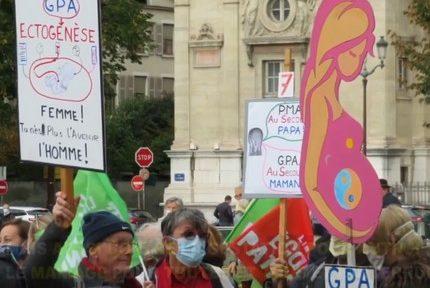 Le mouvement anti-PMA Marchons enfants manifeste à Grenoble samedi 30 janvier