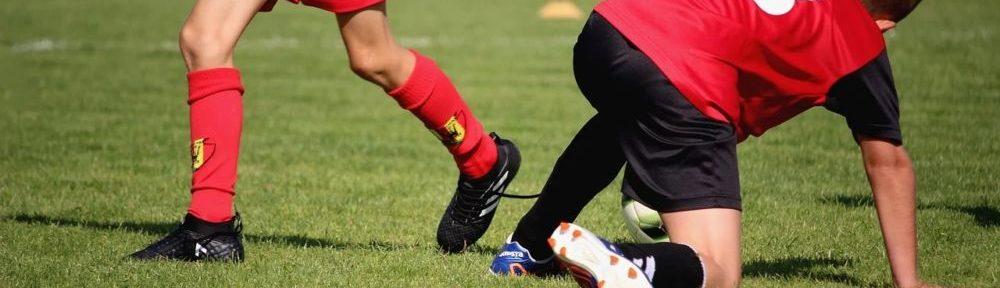Meylan invite enfants et ados à découvrir les activités sportives dans ses équipements les 28 et 29 août