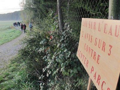 Alors que les recours en justice continuent de tomber sur le projet de Center parcs en Isère, les zones humides sont sous pression.