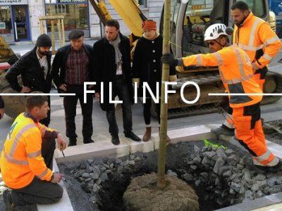 Fil Info inauguration arbres Viallet 5 mars