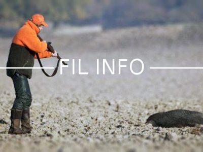 Trois associations de protection de la nature et une dizaine de citoyens ont saisi la justice pour demander la suspension de la chasse l'été en Isère.