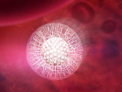 Lipidot-sida-UNE