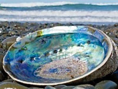 La nacre des coquillages inspirent les chercheurs en science des matériaux pour développer des céramiques dix fois plus résistantes.