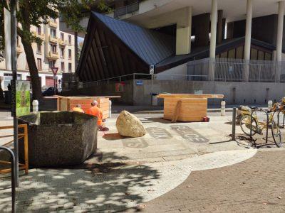 Place(s) aux enfants: nouvelles polémiques autour de la piétonnisation de plusieurs rues à Grenoble