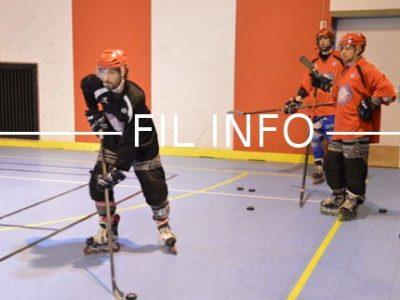 Le roller-hockey est l'une des 30 activités sportives à découvrir lors de la fête des sports organisée par l'OMS de Grenoble, le 25 juin 2017. © Laurent-Genin