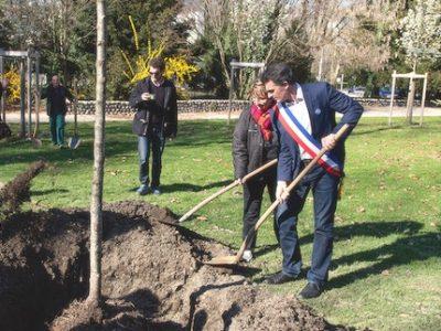 Mercredi 20 mars 2019, Plantation de l'arbre de la fraternite, parc Paul Mistral