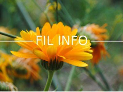 Fil Info fleurs soucis ©FRAPNA-H.Foglar