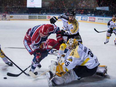 Le match 5 des demi-finales du championnat de France de hockey sur glace a tourné à l'avantage des Brûleurs de Loups face aux Dragons de Rouen (4-3). ©-Yuliya-Ruzhechka