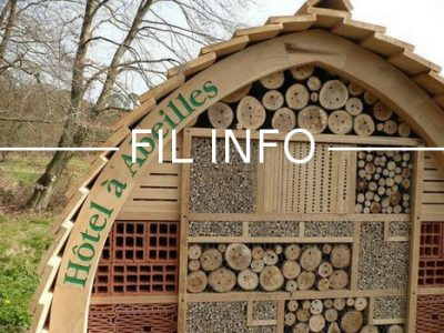 Un hôtel à abeilles a été inauguré à Grenoble à proximité de la Caserne de Bonne. Objectif : sensibilisation, pédagogie et suivi scientifique.