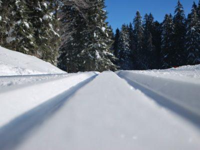 Chartreuse neige ouverture pistes ski Alpes